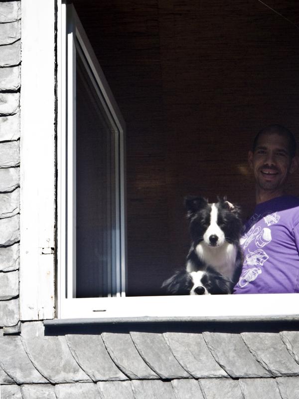 Mann mit zwei Border Collies am Fenster