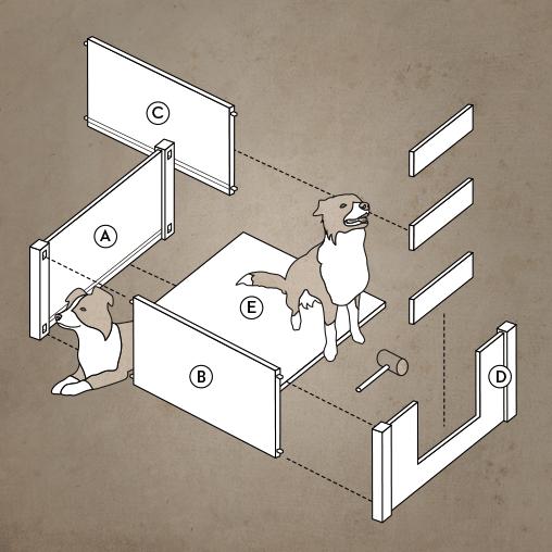 Aufbau einer Wurfkiste für den Hund