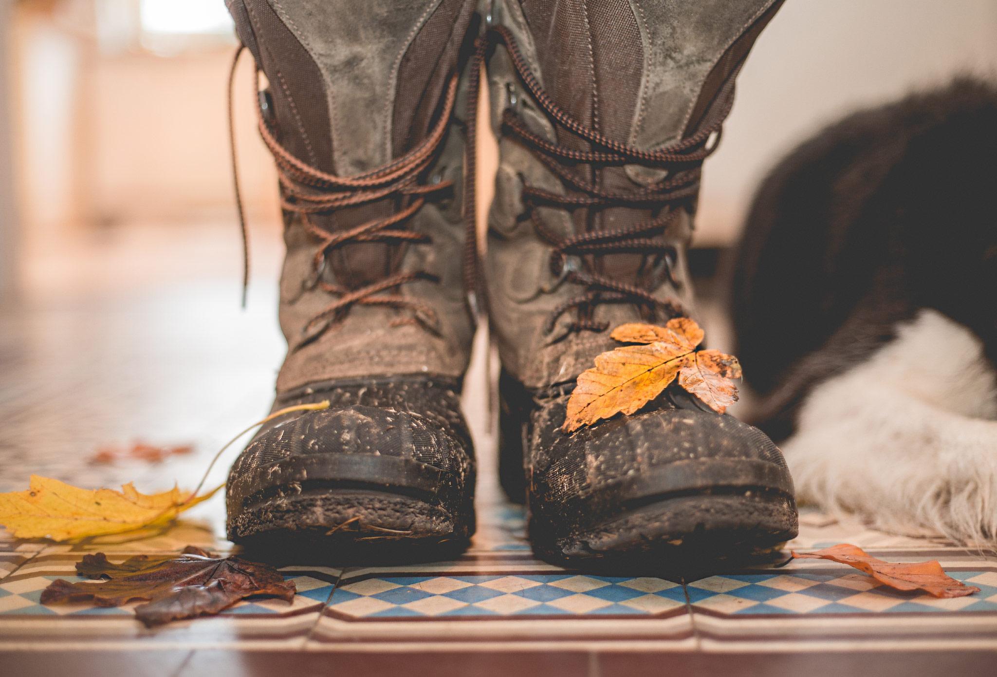 16|11|2016 – Fußboden in Herbststimmung