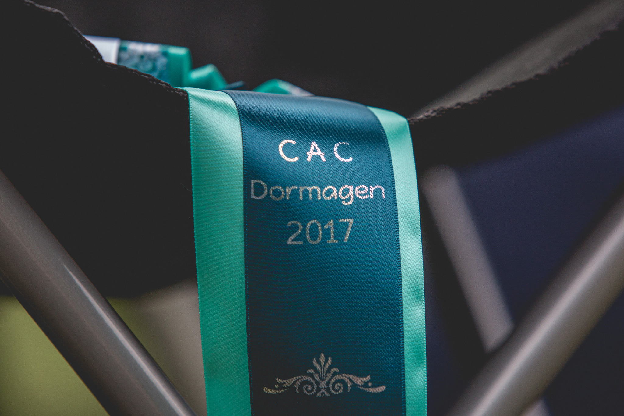 30|07|2017 – Sechs Border Collies auf der CAC Dormagen