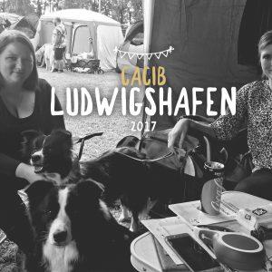 13|08|2017 – Ellie und Crazy auf der CACIB Ludwigshafen
