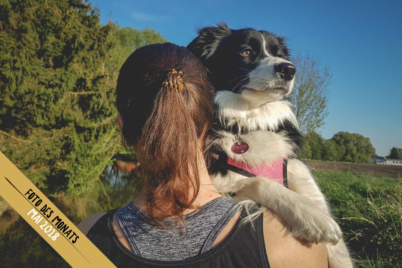 Foto des Monats: Ella (Broadmeadows Euphoria) beim Angeln