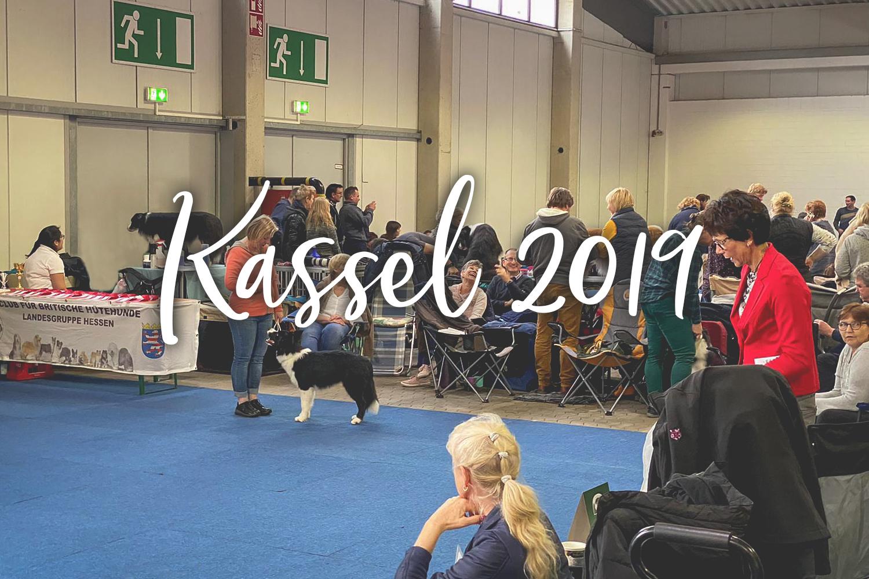 07|12|2019 – Nationale Kassel
