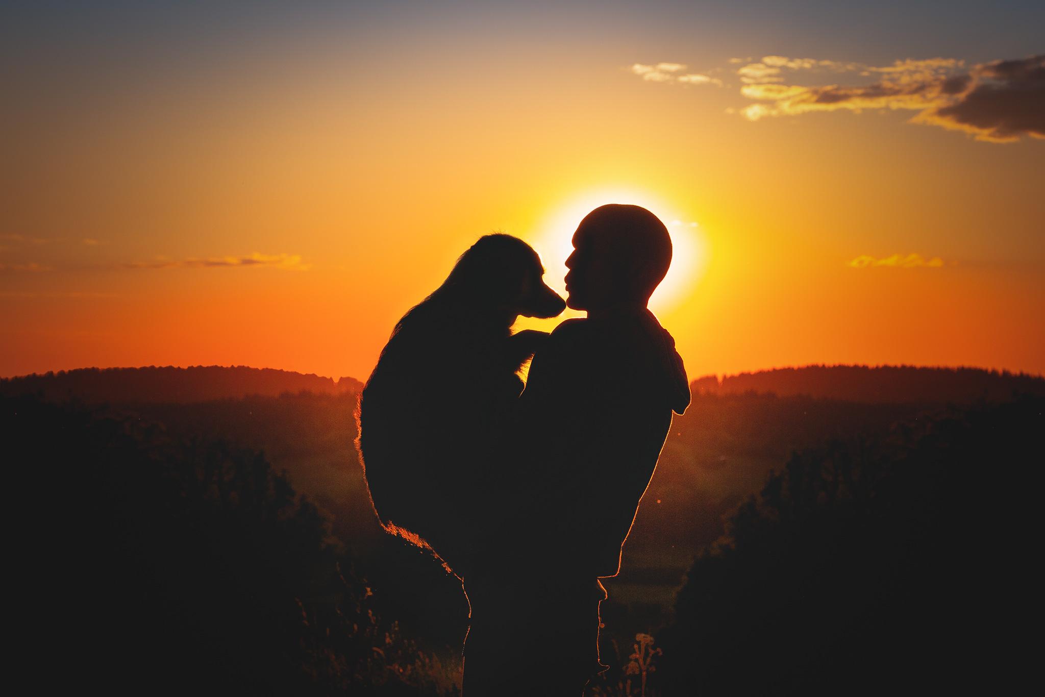 Mensch und Hund im Sonnenuntergang