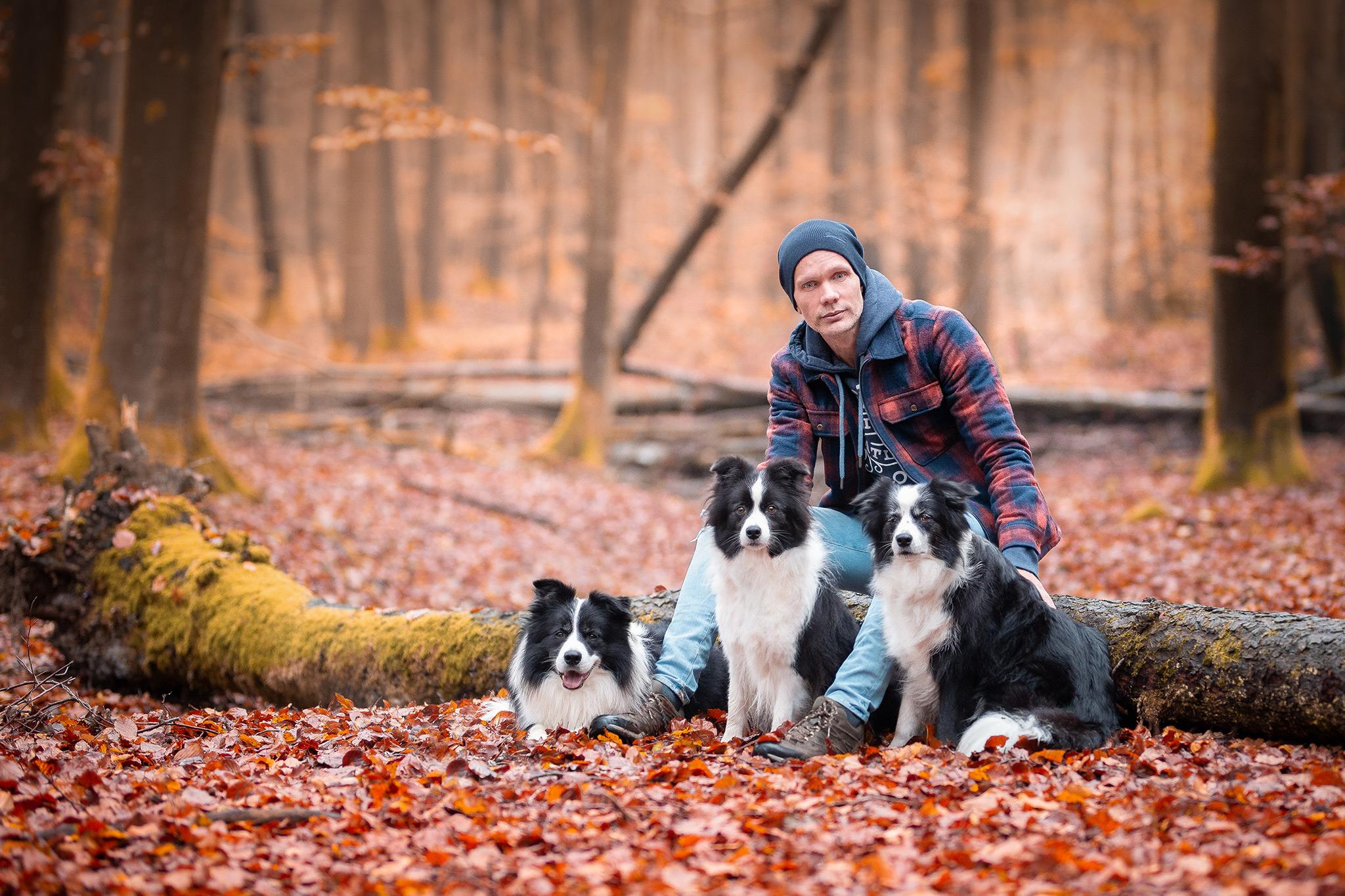 Border Collie Züchter mit seinen Hunden