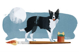 Border Collie Weihnachtsgeschichte, Illustration