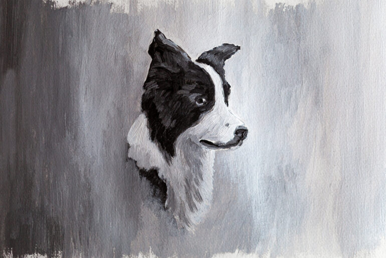 Border Collie Gemälde, Acrylfarben