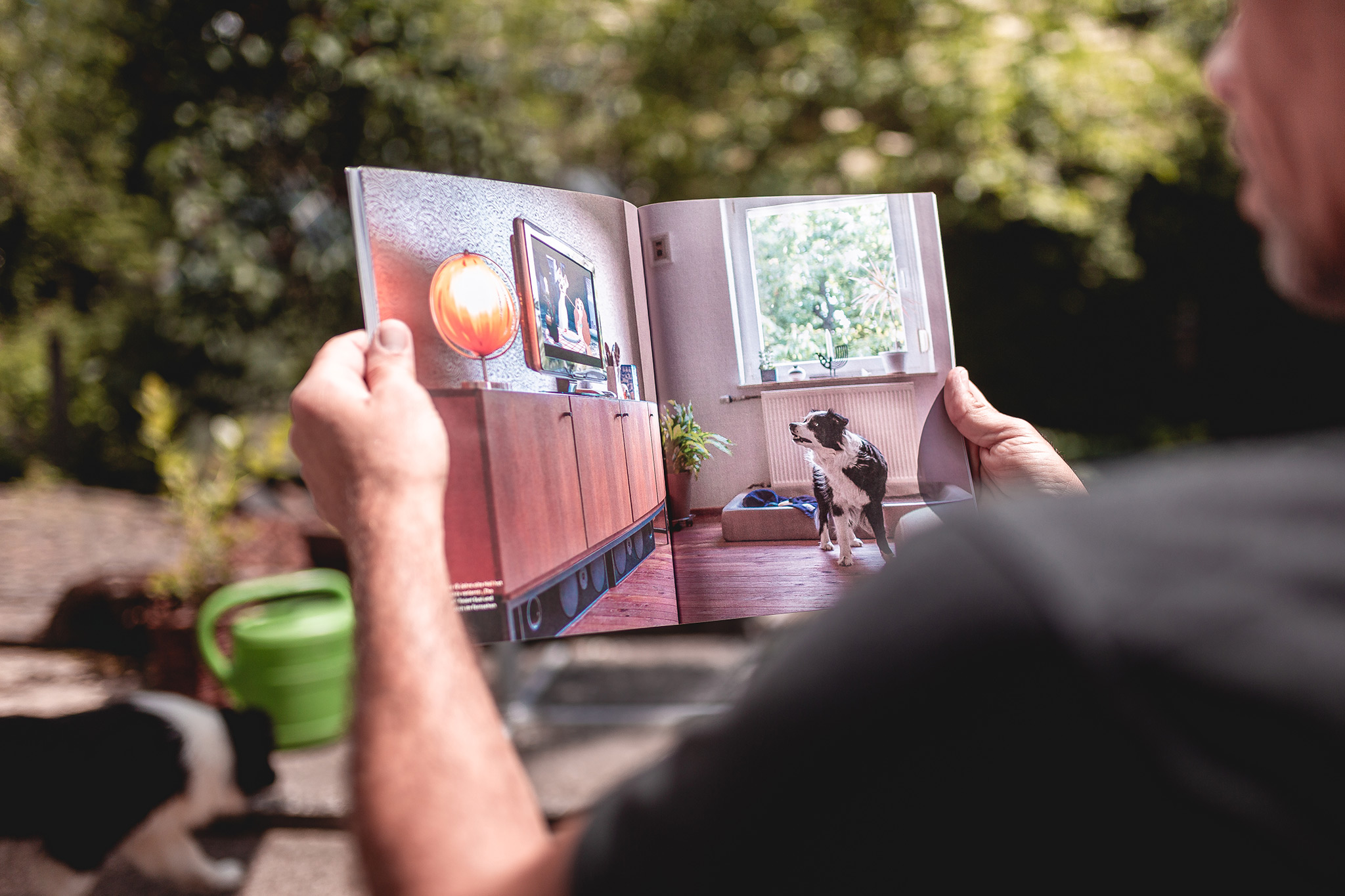 Broadmeadows im dogs-Magazin (Ausgabe 04 2021)